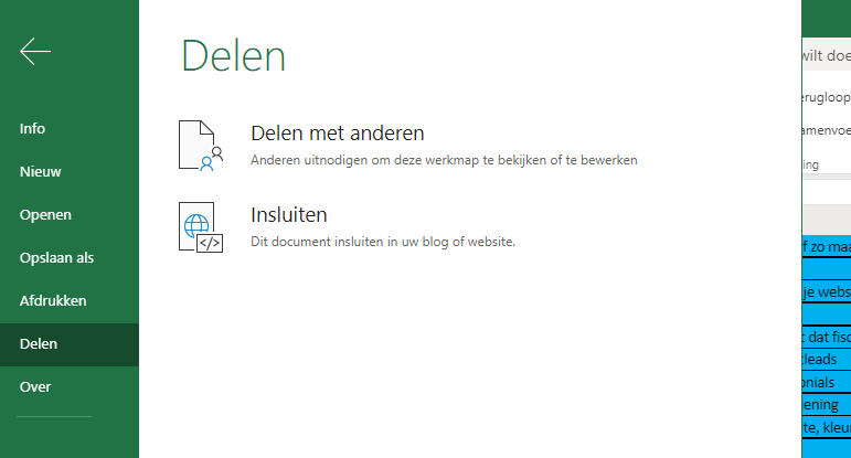 Blog - Een spreadsheet opnemen in je website - 2.png